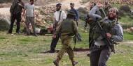 """إنهاء مهمة """"تيف"""" بالخليل.. طمس للحقائق وزيادة لجرائم الاحتلال ومستوطنيه"""