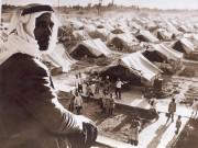 مخيمات اللجوء .. ذكريات مريرة وواقع صعب
