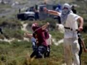 تقرير: عربدة غير مسبوقة للمستوطنين والاحتلال يخطط لزيادة أعدادهم إلى المليون