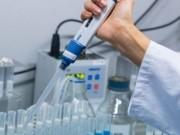 الصحة: تسجيل 306 اصابات جديدة بفيروس كورونا خلال الـ24 ساعة الماضية و23 حالة في غرف العناية المكثفة
